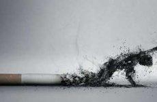 Как избавиться от запаха табака в квартире: способы