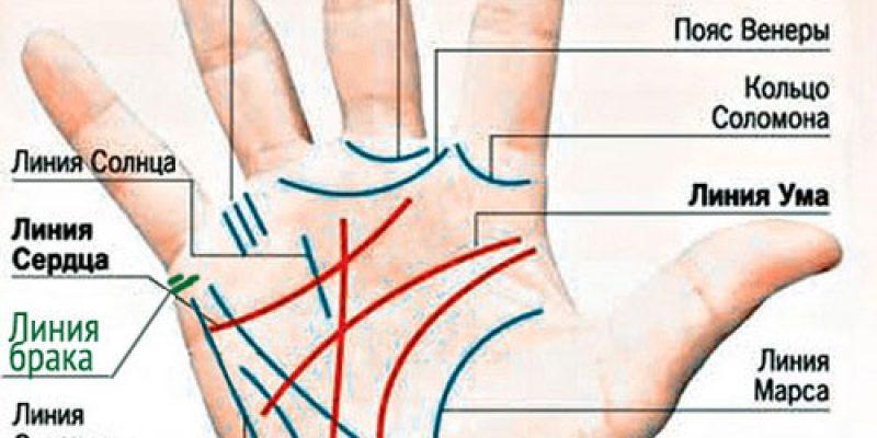 Линия брака на руке у мужчины и женщины с расшифровкой