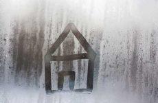 Повышенная влажность в квартире: как избавиться?