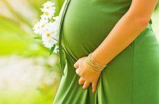 Советы для беременных на ранних и поздних сроках