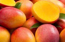 Как правильно кушать и нарезать манго?