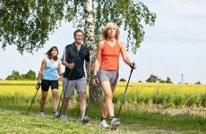 Польза и вред скандинавской ходьбы с палками