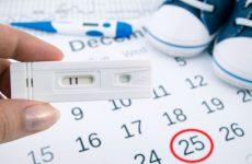 Рассчитываем срок беременности и дату родов по дате зачатия